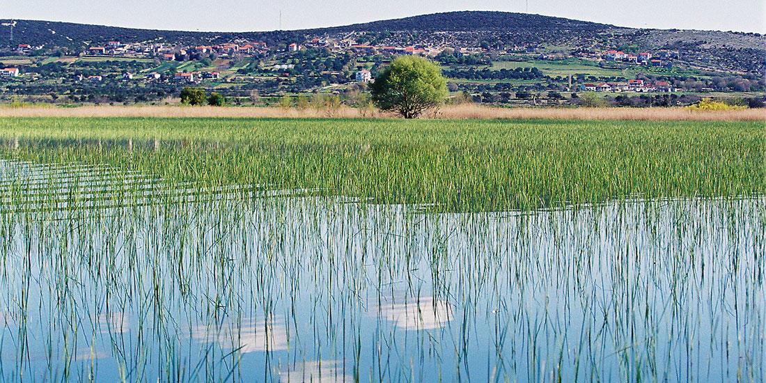 Vrana lake